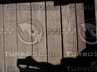 wood0851.jpg