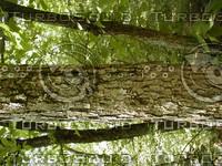 wood0863.jpg