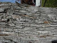 wood0993.jpg