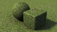 Grass v02