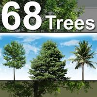 68_Tree_Textures-HiRes