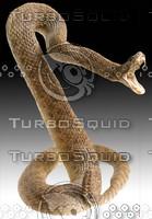 rattlesnake.psd