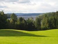 swedish_lawn_view_1.JPG