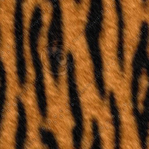 Texture Other Tiger Fur Animal