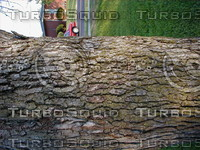 wood0230.jpg