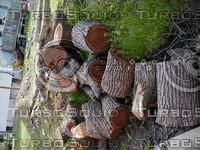 wood0683.jpg