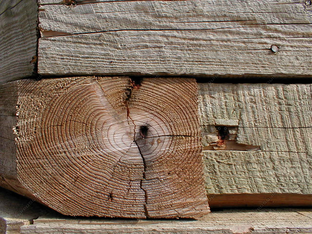 Wood 0772 End Grain and Side Grain Stock Photo