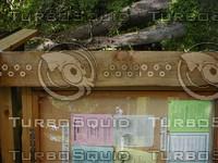wood0789.jpg