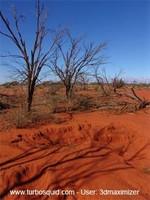 Australia landscape 001.jpg