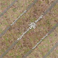 HFDJT_GrassPatchy02_Med.jpg