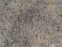 seamless ground surface texture