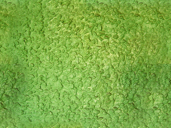 Seamless Rough Green Wall Texture