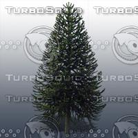 JTX_TREE023.psd.zip