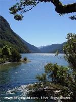 New Zealand landscape 009.jpg