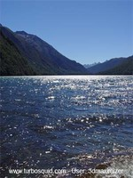 New Zealand landscape 011.jpg