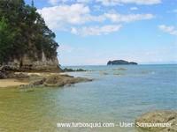 New Zealand landscape 029.jpg