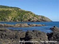 New Zealand landscape 038.jpg