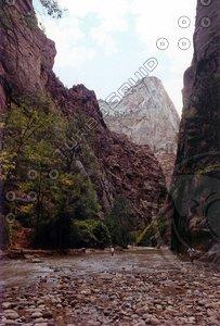 Zion National Park 06 tm.jpg