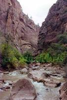 Zion National Park, Utah 11.jpg