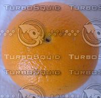 orange_bottom.jpg