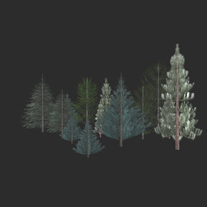 pine tree  model w/15 skins