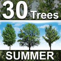 30_Summer_Trees-HiRes.zip