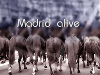 Madrid alive