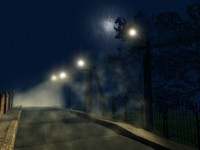 street at the moonlight.jpg
