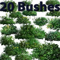 20_bushes.zip