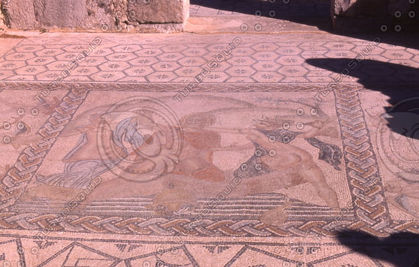 Morocco 261 Volubilis, mosaic floor.jpg