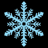 SPV_Snowflake004