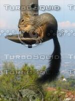 Squirrel 08.JPG