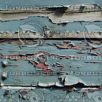 decayed blue wood.jpg