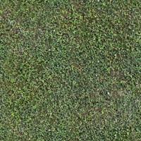 grass001_s_b_1024_2048.jpg