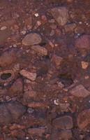 Rock Texture - Gravel 7