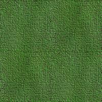 Green Cloth 1