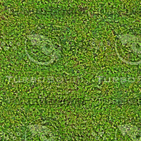 greenFence_tileable.jpg