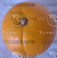 orange_top.jpg