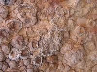 Rock Texture - Rock Balls 2
