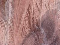 Rock Texture - Sandstone 4