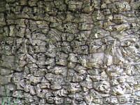 texture_bark2.jpg