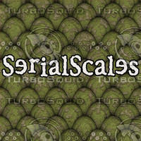 SerialScales 005