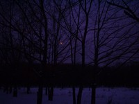 A Journey To The Night Of Love