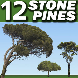 12 Stone Pine Tree Collection ---------------------  High Resolution