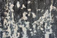 Concrete Texture 005