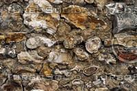 Flint Wall 3.jpg