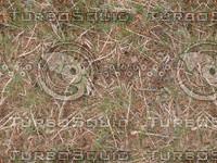 Grass_straw_cover.jpg