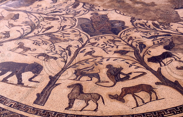 Morocco 252 Volubilis, mosaic floor.jpg
