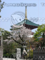 Orient 750 Narita temple and cherry blossoms.JPG