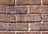 Sunny Brick.jpg